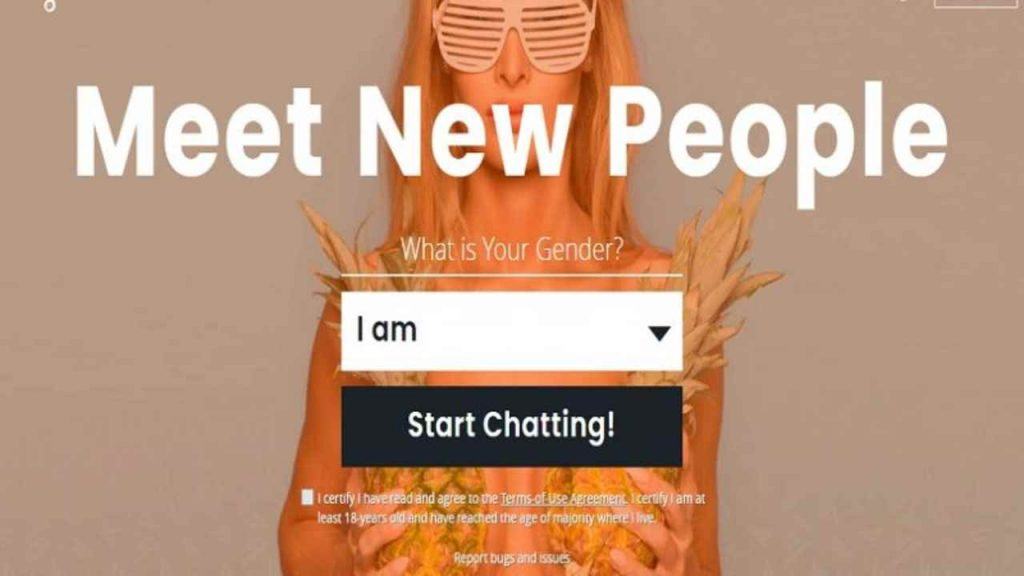 Shagle is one of the best chat sites like Omegle or alternatives to Omegle to video chat with strangers